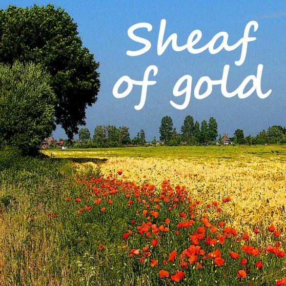 Sheaf of gold square